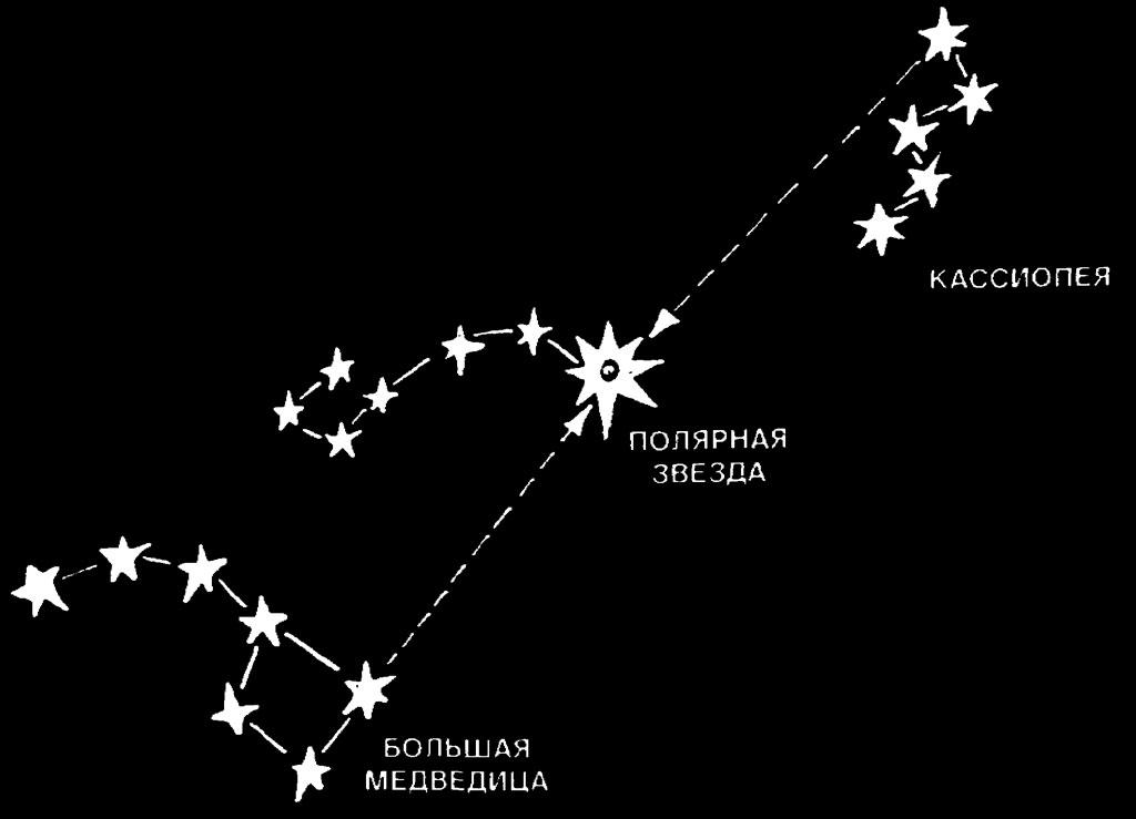 Расположение полярной звезды